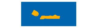 logo SAE